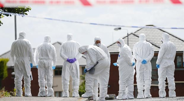 Forensic officers examine the scene in the Sunningdale Gardens area, off the Ballysillan Road following the fatal shooting of John Borland ( Photo by Kevin Scott / Belfast Telegraph )