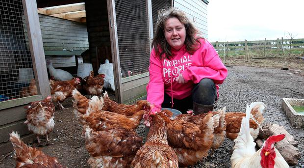 Barbara Mladek feeds the rescued turkeys at the Nut House rescue centre