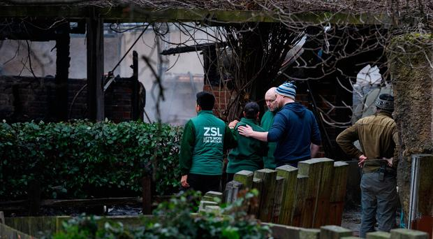 LONDON, ENGLAND - DECEMBER 23: Staff members console each other as they survey the damage after a fire destroyed a number of buildings at London Zoo on December 23, 2017 in London, England. London Fire Brigade have stated that no animals or people have been injured in the blaze, which began at around 06:00 near the Adventure cafe. (Photo by Leon Neal/Getty Images)