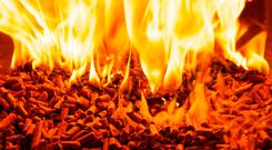 The inquiry into the Renewable Heat Incentive scheme is still ongoing