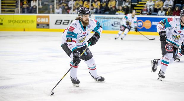 Belfast Giants v Nottingham Panthers. Pic: Panthers Images