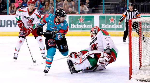 Closing in: Belfast Giants ace Steve Saviano takes aim at the Cardiff Devils' Ben Bowns