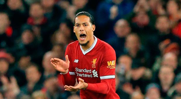 St Mary's return Liverpool new boy Virgil Van Dijk