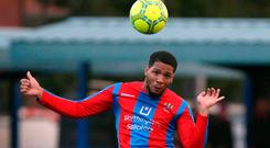 Head man: Guillaume Keke opened the scoring for Ards