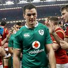 Dark day: Jonathan Sexton walks off the pitch at the Principality Stadium after defeat in Cardiff last year