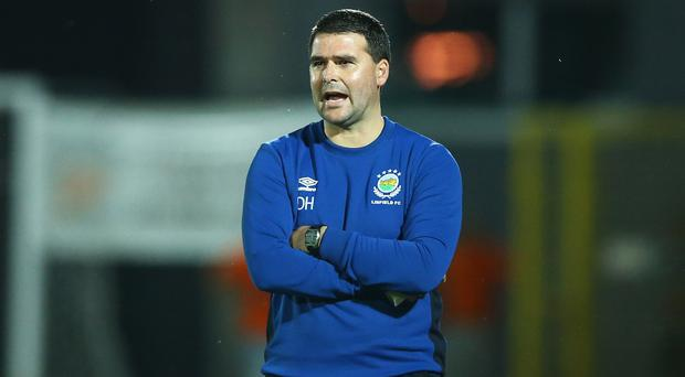 Fully committed: David Healy insists he has no intention of walking away from Windsor Park