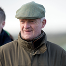 Fighting fit: Willie Mullins is keen to see Ruby Walsh back