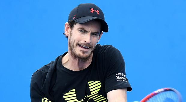Comeback: Andy Murray plans to train on-court this month