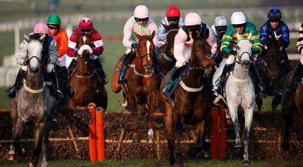 Race is on: All racing fans are eagerly anticipating the top class competition at the Cheltenham Festival next week