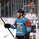 Steve Saviano of the Belfast Giants