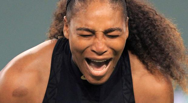Competitive spirit: Serena Williams at Indian Wells
