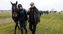 Winning team: Ruby Walsh and Willie Mullins out on the gallops yesterday at Cheltenham