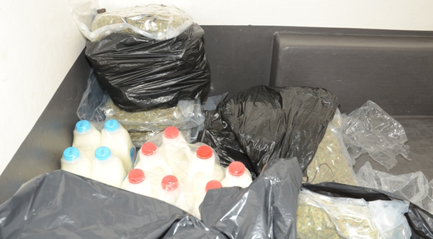 The drugs seized by police / Credit: PSNI