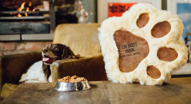 Molly helps launch a brand-new menu at The Dirty Onion for its furry, four legged customers created in partnership with local pet food brand, Naturo.