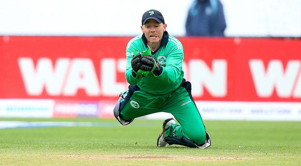 Big day: Niall O'Brien is hoping to help Ireland reach the World Cup finals in his 100th ODI