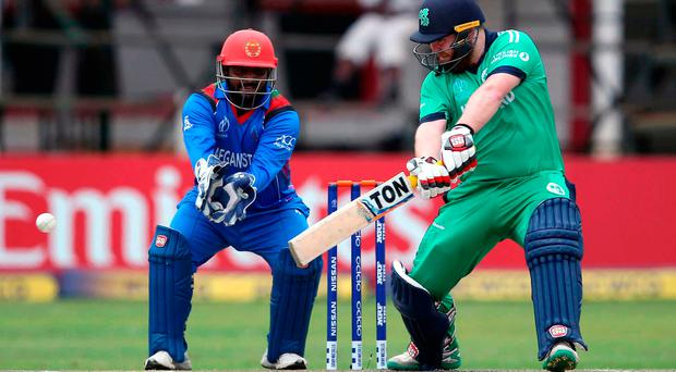 Ireland's World Cup hopes crushed by Afghanistan