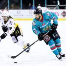 Belfast Giants David Rutherford in action. Photo by William Cherry/Presseye