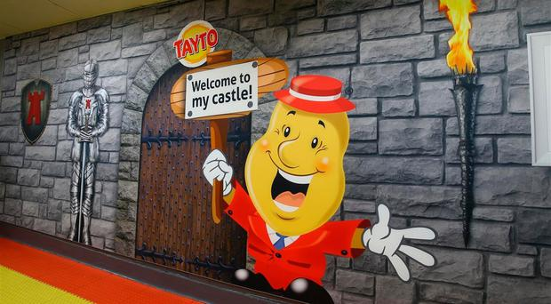 Pre-tax profits at the group, whose Tayto crisps are made in Tandragee's Tayto Castle, were down from £2.9m to £1.5m