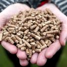 Eco-friendly wood chip boilers similar to batches used as an incentive in Stormont's botched green energy scheme (Niall Carson/PA)