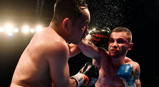 Big connection: Carl Frampton lands a shot on Nonito Donaire