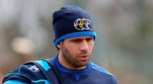 Huge contribution: Leinster's Isa Nacewa will retire at the end of the season at the age of 35
