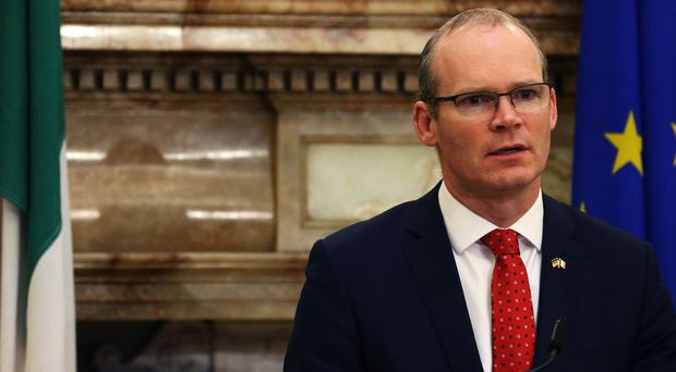 Mr Coveney said Mr Dodds' language was unfortunate (Brian Lawless/PA)