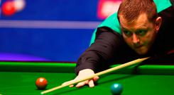 On cue: Mark Allen lines up a shot on his way to a comfortable 13-8 victory over Joe Perry, winning five frames in a row, at the Betfred World Snooker Championship last night