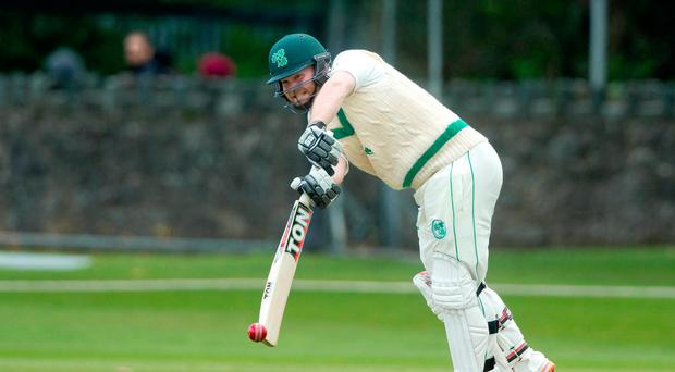 Special occasion: Paul Stirling is approaching Test with confidence