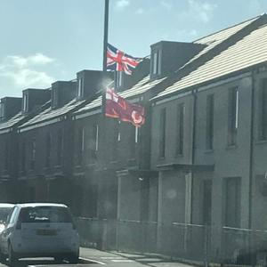 UVF flags erected in south Belfast. Credit: Emmet McDonough-Brown