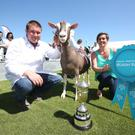 Marcus Galbraith with his overall show champion goat presented by Sarah McCoy, Ulster Bank Business Executive