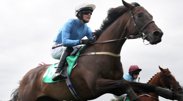 Crowning success: King Of Aran and Danny Mullins were winners at Downpatrick last night