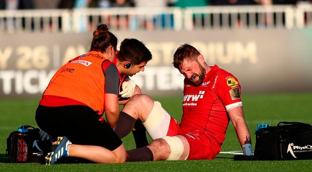 Major blow: John Barclay after rupturing his Achilles tendon