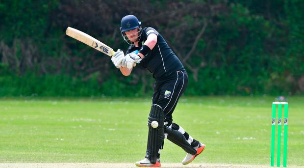 Top man: Mark Adair in action for Holywood in their surprise cup win