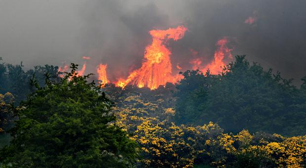 Fire rages on the Cave Hill over looking Belfast. Pic Alan Lewis