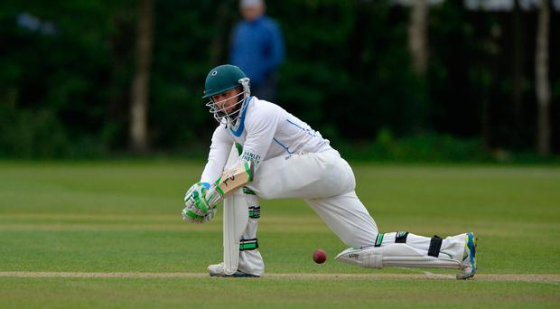 Big impact: John Anderson steered Leinster Lightning home with an impressive century