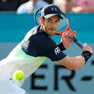 Old routine: Andy Murray in his first match in almost a year, against Nick Kyrgios at Queen's