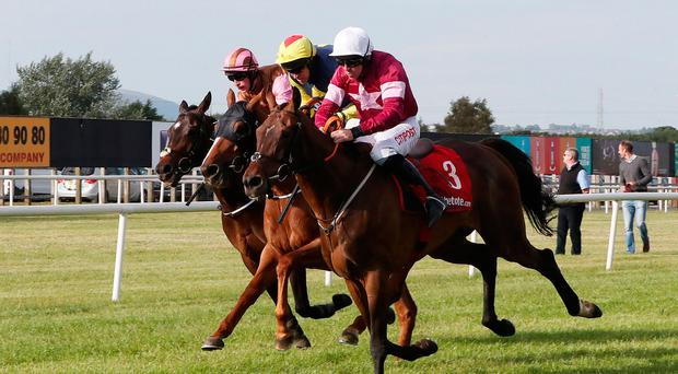 Winning ride: Davy Russell on board The Game Changer (number 3) is first past the post in The Tote.com Hurdle yesterday at Down Royal