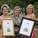 Helen Boyd, chairperson of Randalstown Tidy Town; Doreen Muskett, president of the NI Amenity Council and Jane McTaggart collect the awards