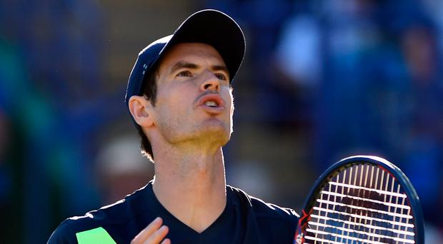 Comeback trail: Andy Murray loses to Kyle Edmund yesterday