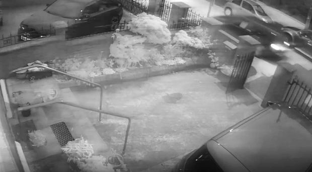 Video grab courtesy of An Phoblacht from CCTV footage of an attack on the home of former Sinn Fein president Gerry Adams