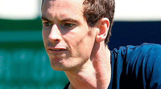 Comeback: Andy Murray will compete at Washington Open