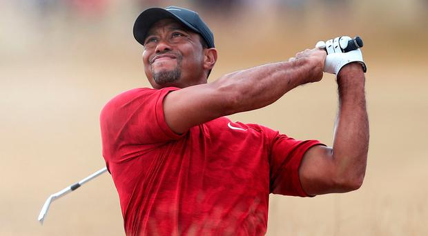 Quality: Tiger Woods has rocketed up world rankings