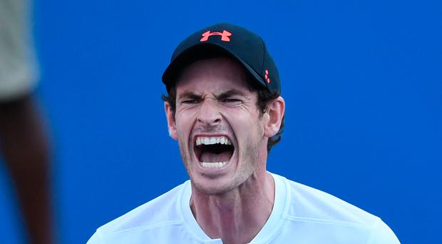 Victory roar: Andy Murray celebrates victory over Kyle Edmund