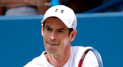 Kind draw: Andy Murray faces world No 445 at the US Open