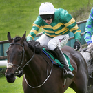 In clear: Mark Walsh and Paris Texas break away to win the opener at Downpatrick
