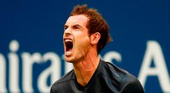 Go down fighting: Andy Murray battles hard but exits US Open