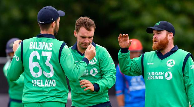 Tough time: Ireland found positives hard to come by against Afghanistan