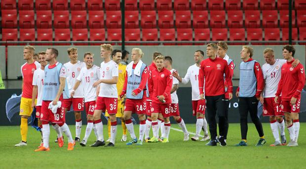 Underdogs: Denmark put up a brave showing