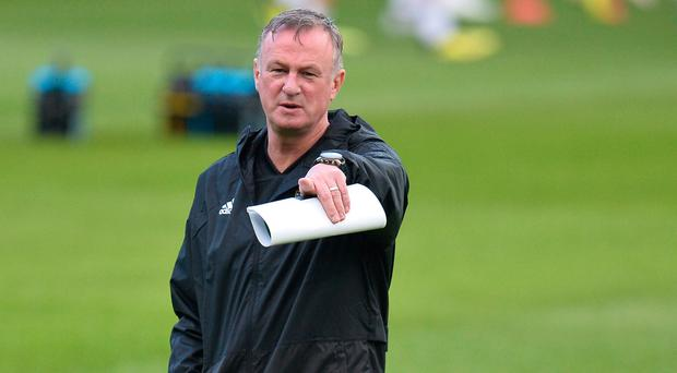 Making a point: Michael O'Neill is keen to remain realistic