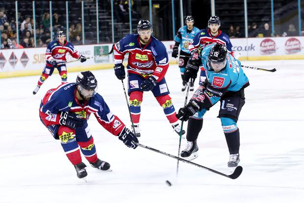 Belfast Giants' Darcy Murphy with Dundee Stars' Connor Cox during Friday nights Challenge Cup game at the SSE Arena, Belfast. Photo by William Cherry/Presseye